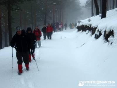 Descenso a Garganta de los Montes - Turismo Activo Madrid; bosque de irati